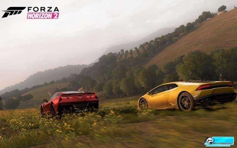 Достоинства и недостатки Forza Horizon 2