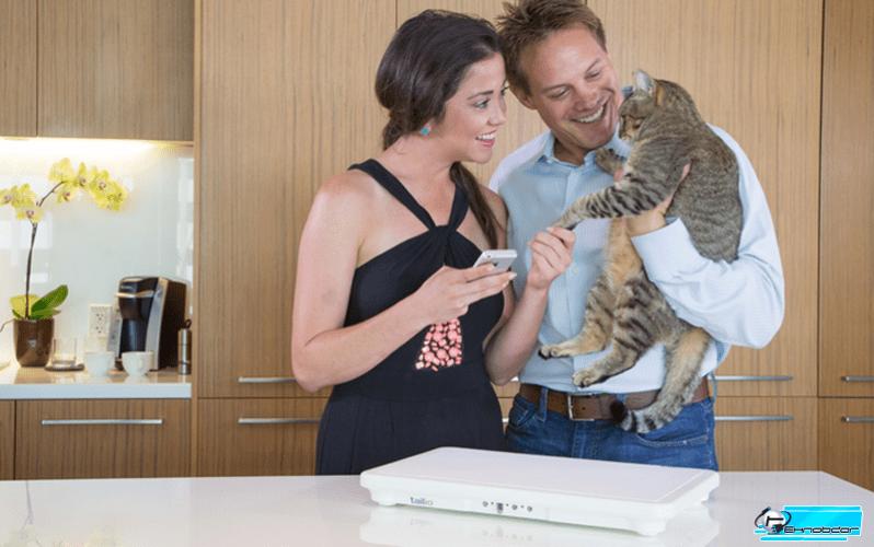 """Умный туалет для кошки """"Tailio"""" – проследит за здоровьем животного"""