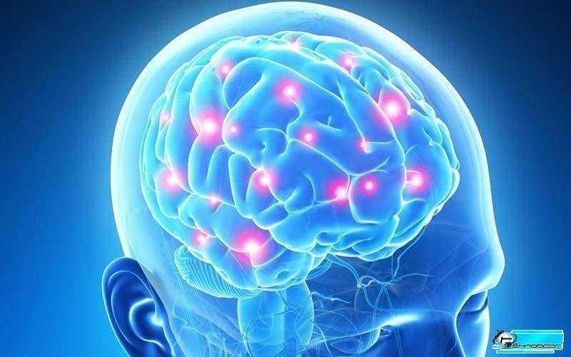 Мозговой декодер услышит Ваши мысли