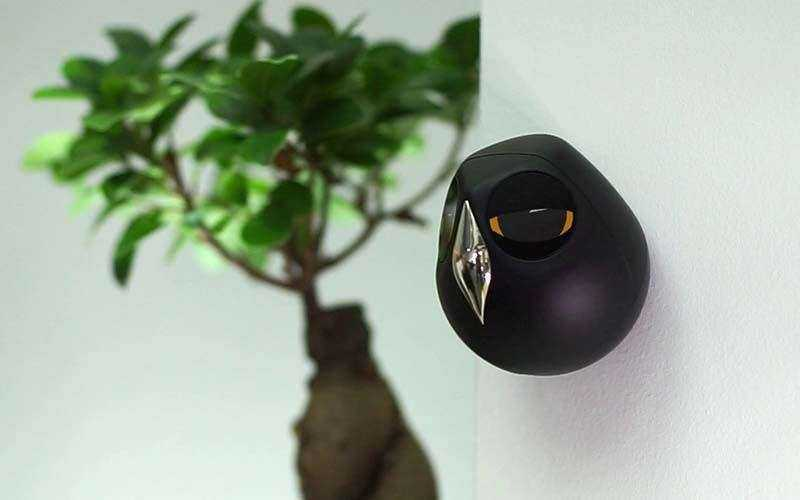 Сова ULO - камера безопасности