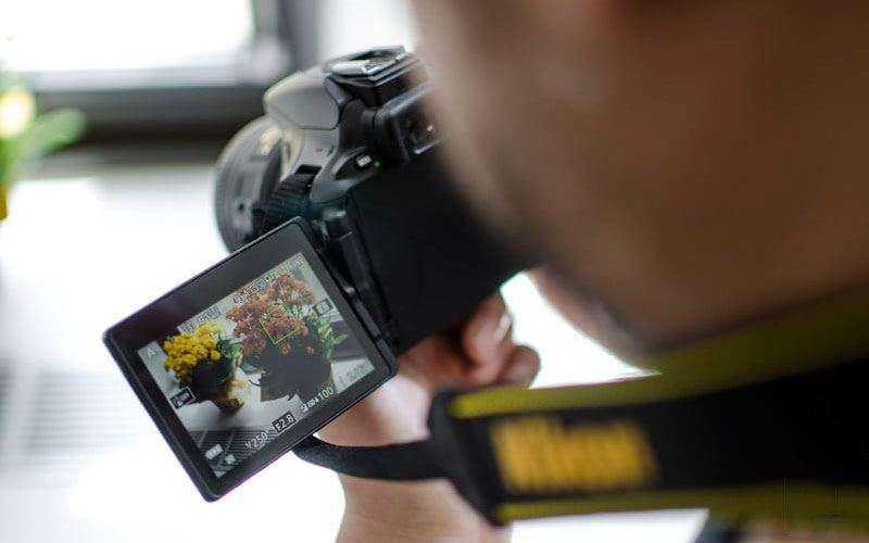 Nikon D5600 — Обзор компактной зеркальной фотокамеры среднего уровня