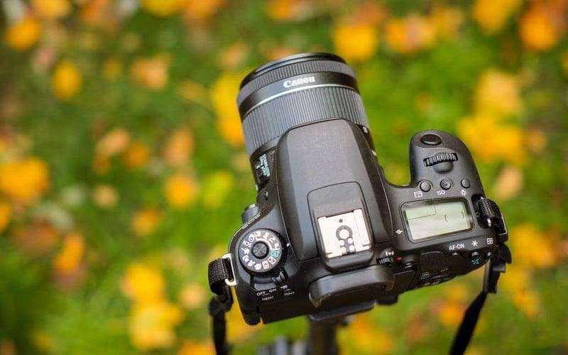 Canon EOS 77D на практике