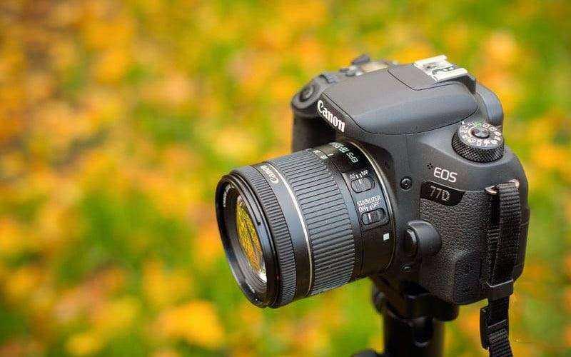 Удобство Canon EOS 77D