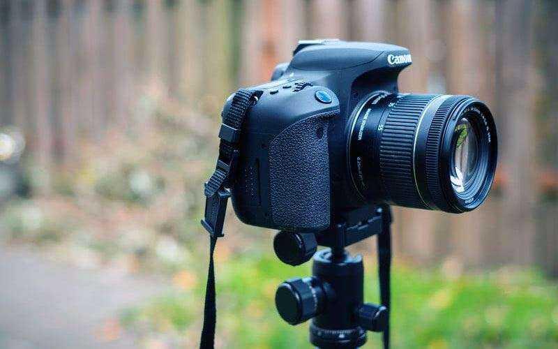 Качество снимков Canon EOS 77D