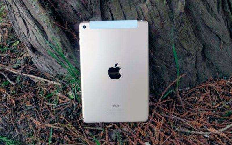 Apple iPad Mini 4 сзади
