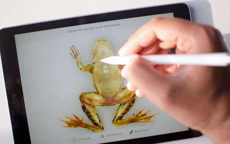 Экран Apple iPad (2018)