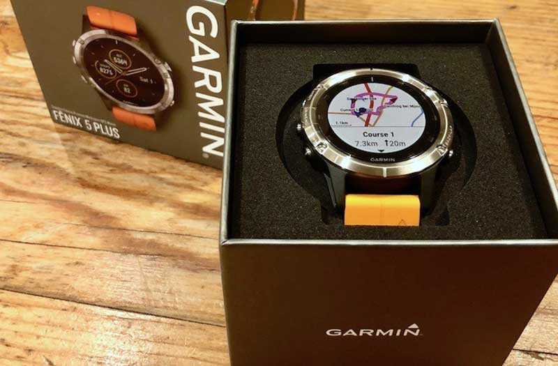 Спортивные часы Garmin Fenix 5 Plus