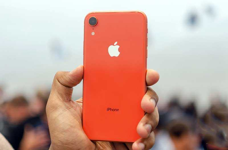 iPhone XR сзади