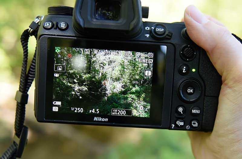 Nikon Z7 съёмка видео