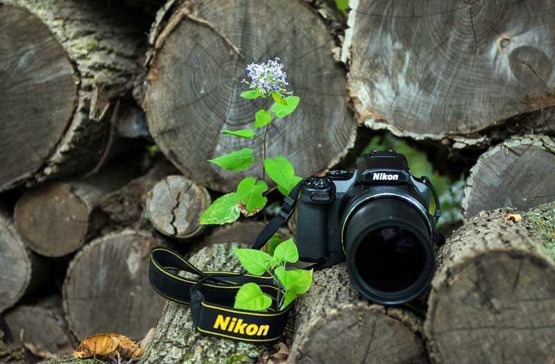 Nikon Coolpix P1000 отзывы