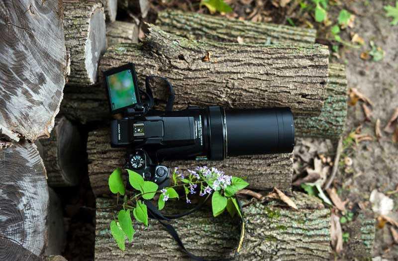 Nikon Coolpix P1000 и 125-кратный зум