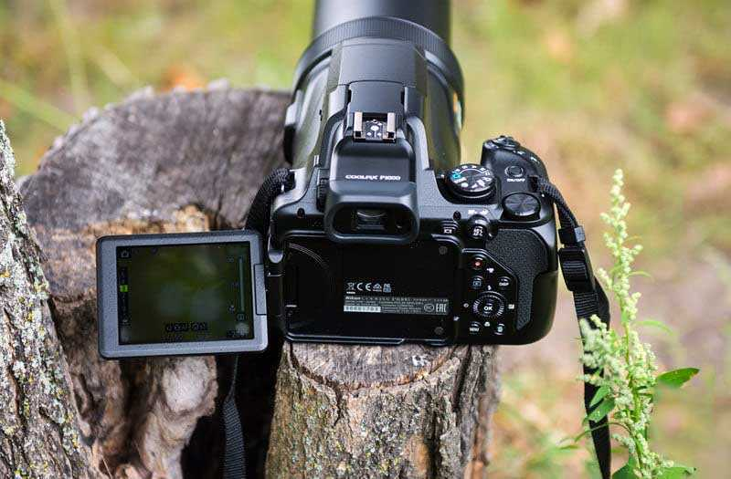 Тест Nikon Coolpix P1000