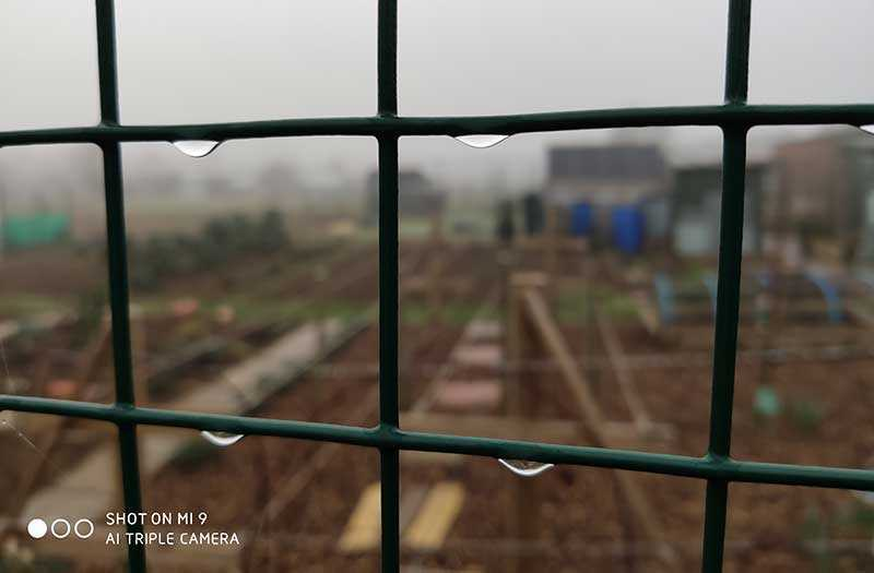 Xiaomi Mi 9 снимки