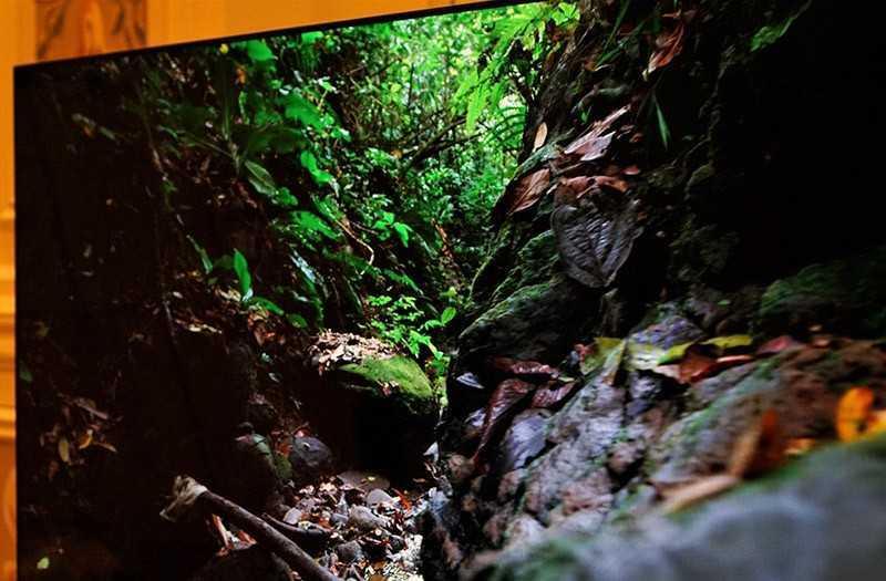 Alienware 55 OLED отзывы