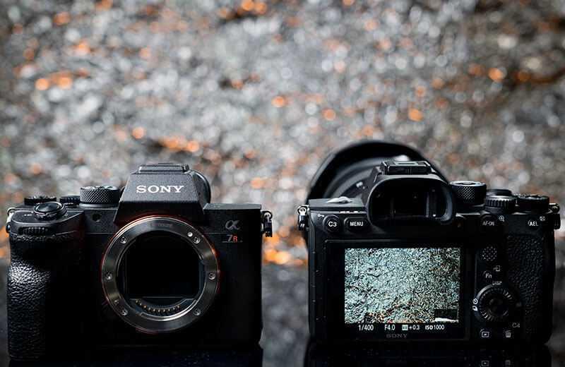 Тест Sony A7R IV