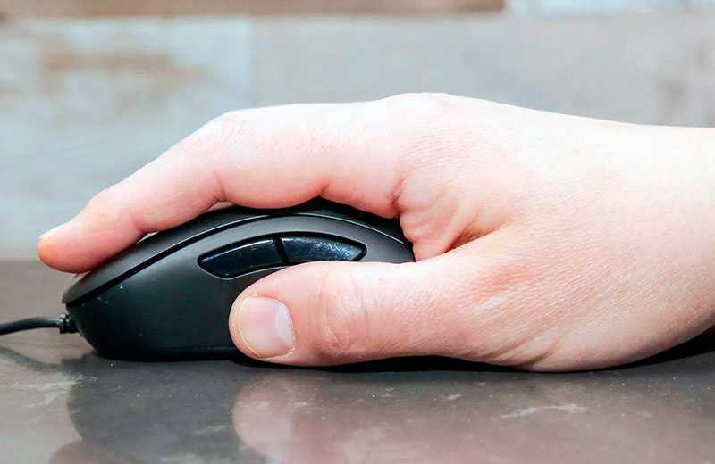 Какая мышь подходит для Palm Grip?