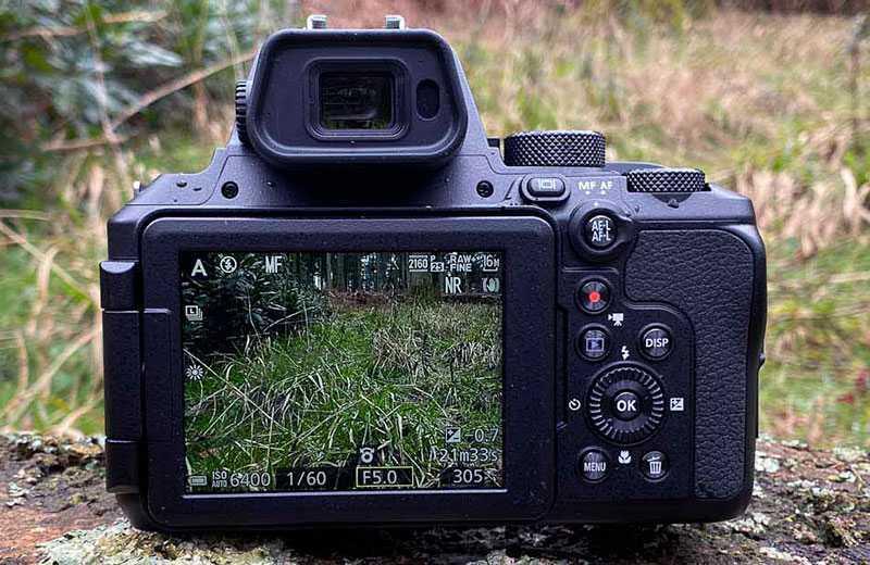 Nikon P950 съёмка