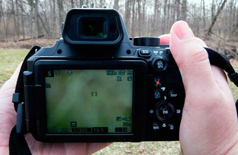 Nikon P950 видоискатель