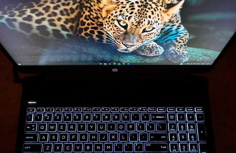 HP Pavilion Gaming 16 клавиатура