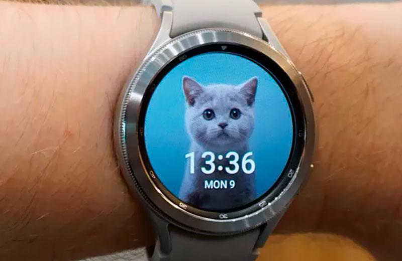 Экраны Samsung Galaxy Watch 4